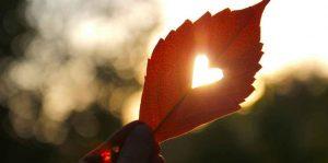 Reguli pentru a-ți proteja inima în sezonul rece